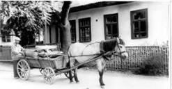 Istoria companiei